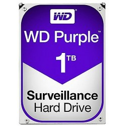 Western Digital Purple (WD10PURZ)