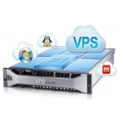Virtual Private Server VPS-1000HA-S